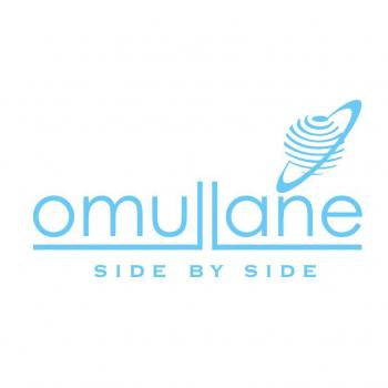 Omullane Management Solutions PVT LTD in Hyderabad
