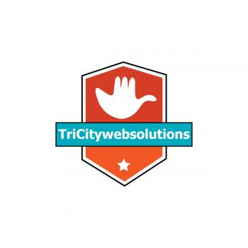 TriCity Web Solutions in Chandigrah