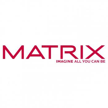 Matrix Professional India in Mumbai, Mumbai City