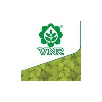 VNR Seeds in Raipur