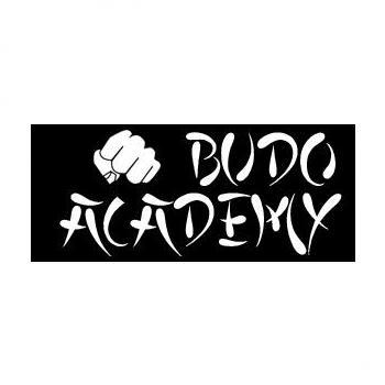 Budo Academy in Ernakulam