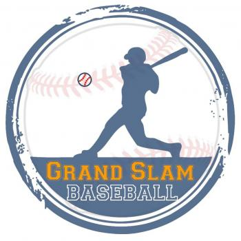 Grand Slam Baseball in New Delhi