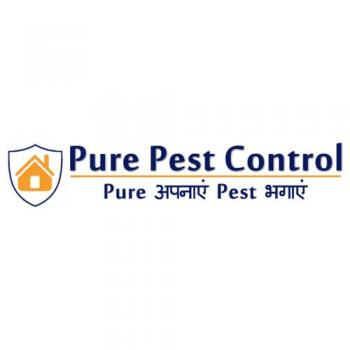 Pure Pest Control in Ludhiana
