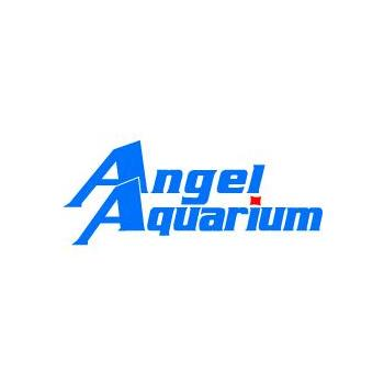 Angel Aquarium in Coimbatore