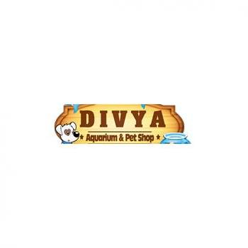 Divya Aquarium & Pet Shop in Chennai