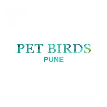 Pets Birds in Pune