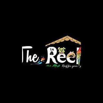 The Reef Aquarium & Petshop in Chennai