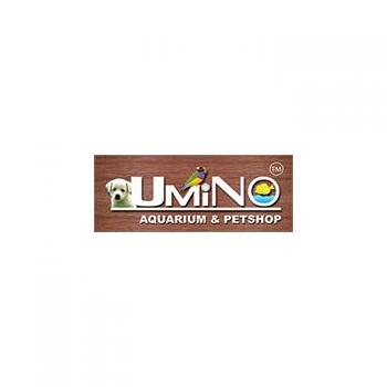 Umino Aquarium & Pet Shop in Chennai