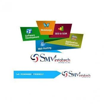 SMV Infotech Services Pvt Ltd in patna, Patna