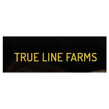 True Line Farms in Thrissur