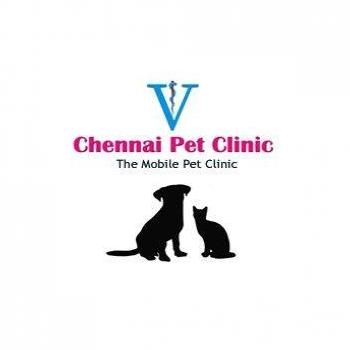 Chennai Pet Clinic in Chennai