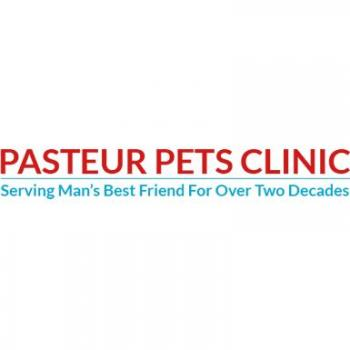 Pasteur Pets Clinic in Chennai
