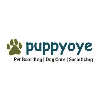 Puppyoye in Bengaluru, Bangalore