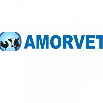 amorvet animal health care in delhi