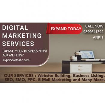 Expand With SEO in New Delhi