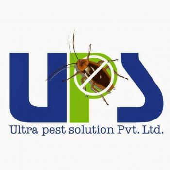 Ultra Pest Solution in Surat