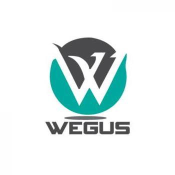 Wegus Infotech in Bangalore