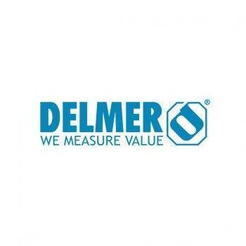Delmer Group in Vadodara