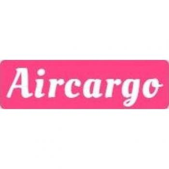 Air Caargo Packers Logistics in new delhi