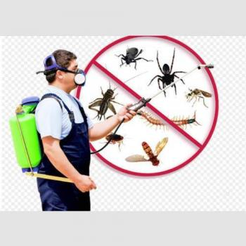 Sri krishna pest control services in Bangalore