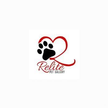 Relite Pet Gallery in Lucknow