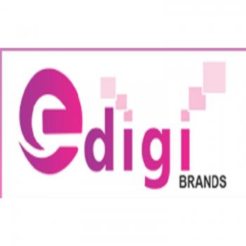 Edigibrands in Pune Cantt East
