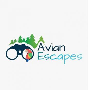 Avian Escapes in Guwahati, Kamrup Metropolitan