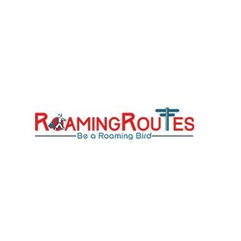 Roaming Routes India Pvt Ltd in Jaipur