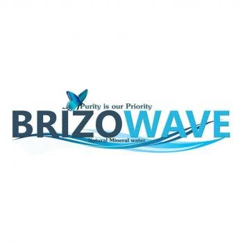 Brizo Wave Pvt Ltd in Gaya