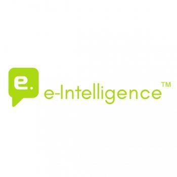 E-Intelligence in Vadodara