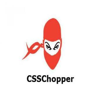 CSSChopper in Noida, Gautam Buddha Nagar