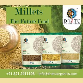 Dhatu Organics in Mysore