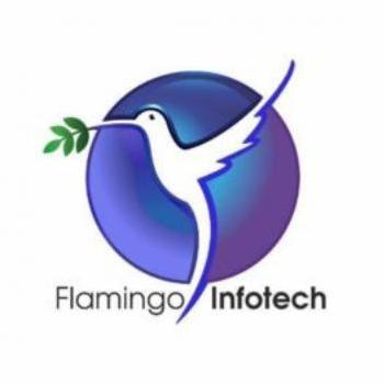 Flamingo Infotech in Rohini