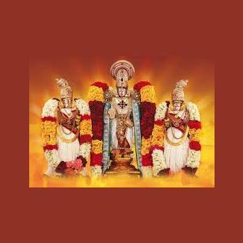 SRI BALAJI TOURS AND TRAVEL in Select City