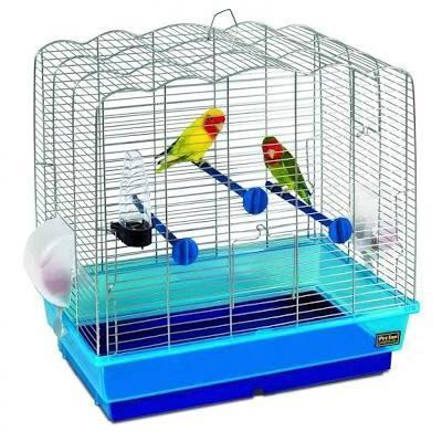 Bird's Cage at Golden Fins Aqua and Pet store in Muvattupuzha