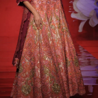 Red & Golden Lehenga at Anjalee and Arjun Kapoor in Delhi