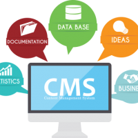 CMS Website Development Company at Dream Cyber Infoway PVT LTD in Indore