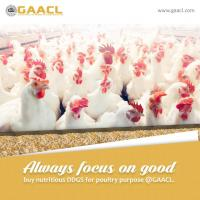 ddgs products for poultry at DDGS Products in Gurgaon