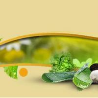 Buy Ayurvedic Products Online in Bangalore | Eayur at Buy Ayurvedic Products Online in Bangalore Eayur in Bangalore