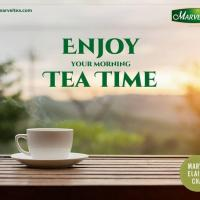 Green Tea With Lemon at Marvel Tea Estate India Limited in Gurgaon