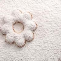 Snow Sugar at Swiss Bake Ingredients Pvt. Ltd. in Mumbai
