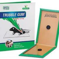 Glue Trap at yesboss pesticde services in jaipur