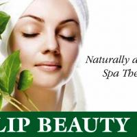 Deep Tissue Massage | Body Massagee in Nagpur at Tulip Beauty Spa in Nagpur