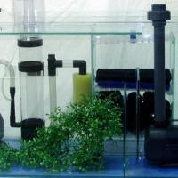 Aquarium Accessories at Fish World Aquarium & Pets in Attingal