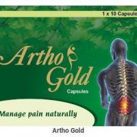 Artho Gold at Ayurveda Yog Ashram in Amritsar